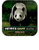 free untamed giant panda mobile slot